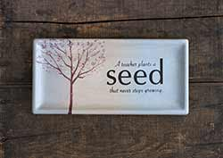 A Teacher Plants a Seed Rectangle Tray
