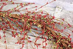 Red & Green Pip Berry Garland