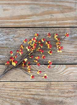 Bittersweet Floral Branch