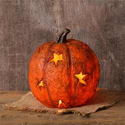 Lit Pumpkin with Star Cutouts - Smaller