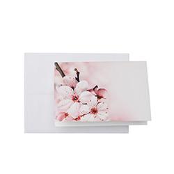 Blank Folded Cards