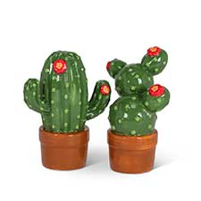 Cactus & Succulent Decor and Gifts