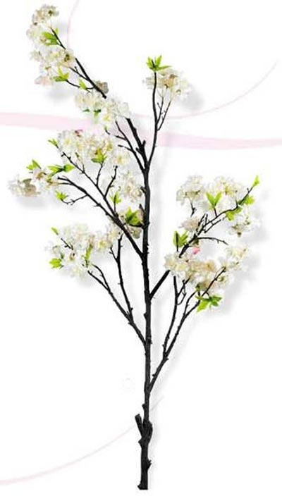 Cherry Blossom Stem, by K & K Interiors