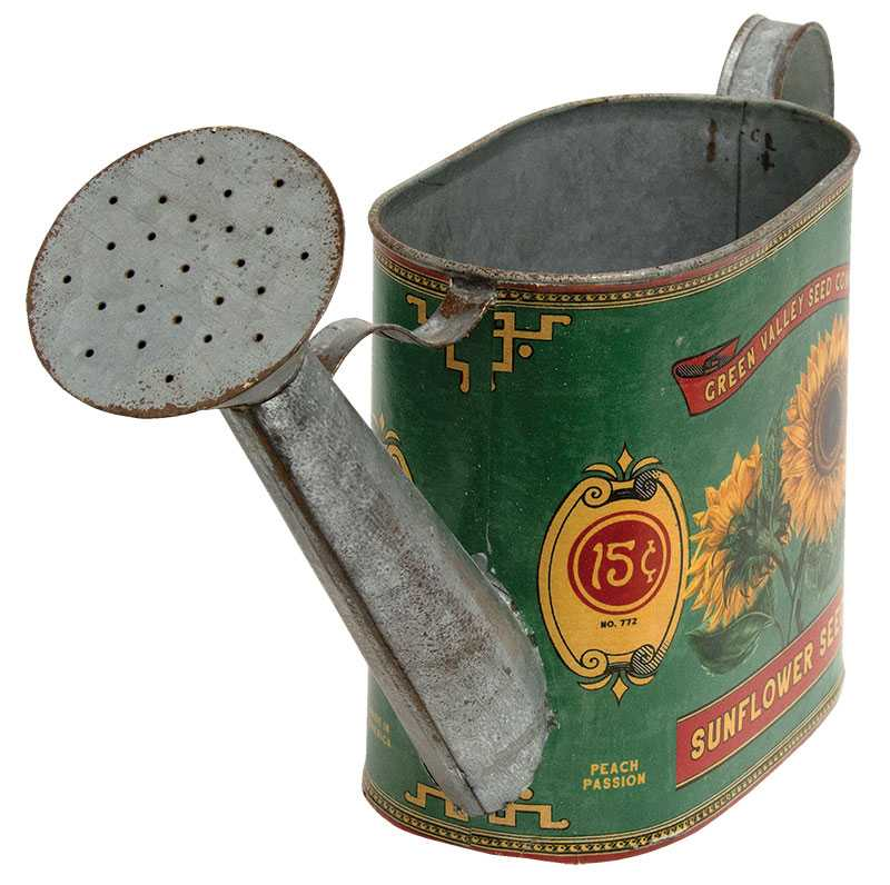 Sunflower Watering Can
