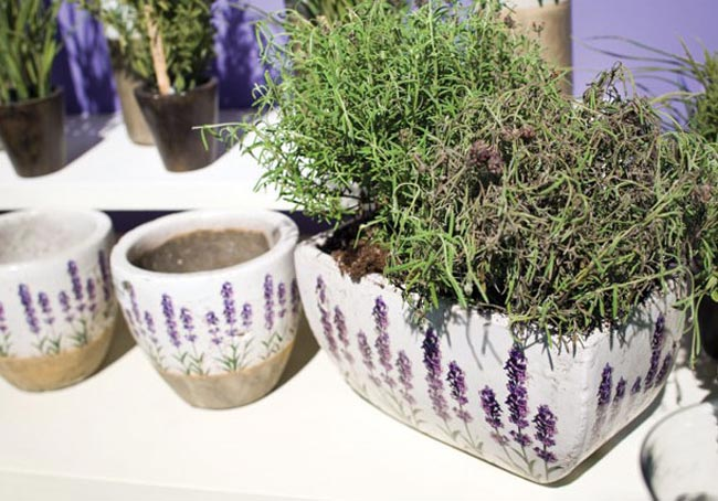 Lavender Planter, by Abbott