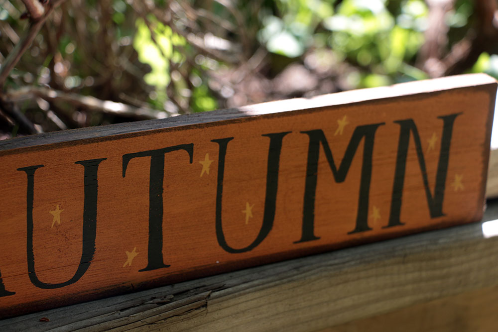 Autumn With Stars Wooden Sign By Our Backyard Studio In