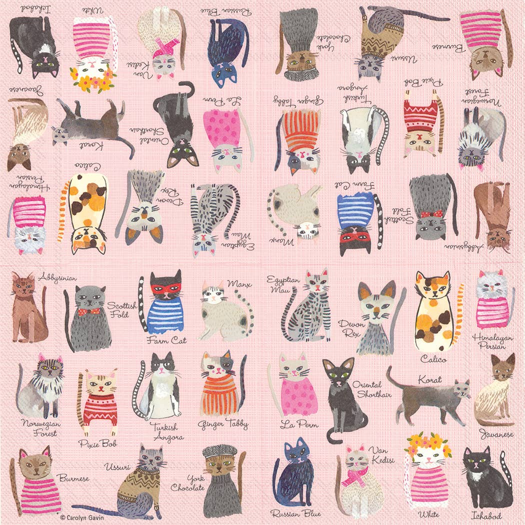 Cool Cats Paper Luncheon Napkins