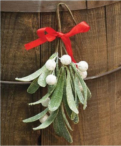Iced Mistletoe 8 inch Pick