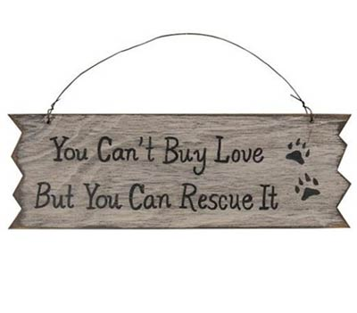 You Can't Buy Love Sign