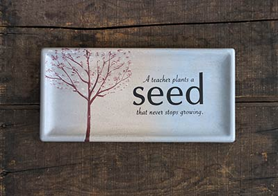 A Teacher Plants a Seed Rectangle Tray
