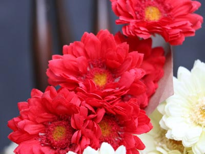 Chrysanthemum Bouquet - Red