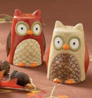 Owl Salt &amp; Pepper Shaker Set