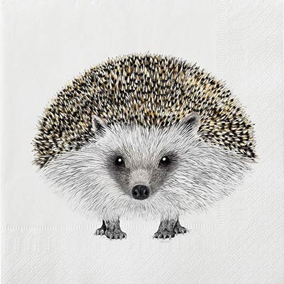 Henry Hedgehog Luncheon Paper Napkins