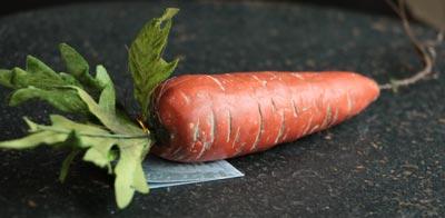 Terra Cotta Carrot