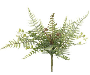 Iced Fern Spray