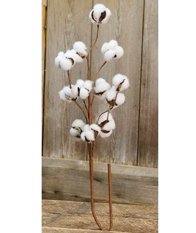 Cotton Ball 29 inch Spray