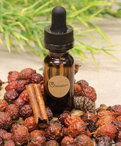 Cinnamon Potpourri Refresher Oil