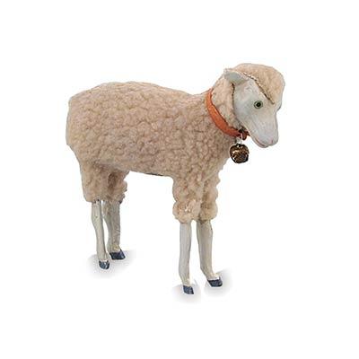 German Reproduction Sheep