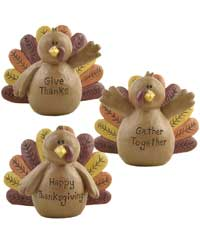 Blossom Bucket Gather Together Turkey