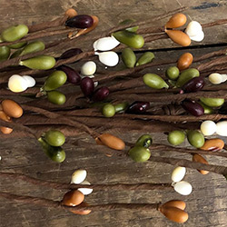 Burgundy, Ivory, Green, & Tea Stain Pip Berry Garland