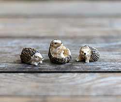 Mini Garden Hedgehogs (Set of 3)