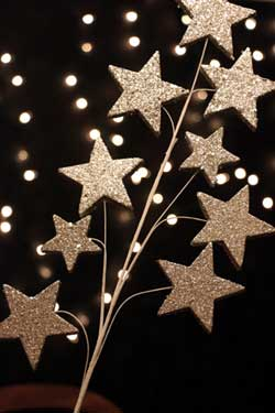 Silver Glitter Star Pick