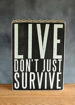 Live Don't Just Survive Box Sign