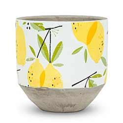 Lemon Planter