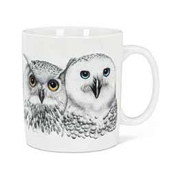 Contemplation Owls Jumbo Mug