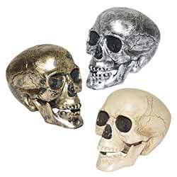 Gothic Skull Decorations (Set of 3)