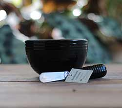 Blackstone Dip Bowl & Spreader Set