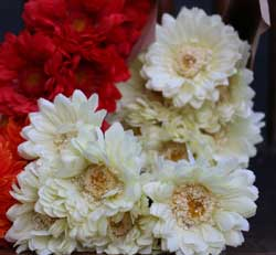Chrysanthemum Bouquet - Cream