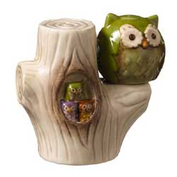 Crimson Hollow Owl Salt and Pepper Shaker Set