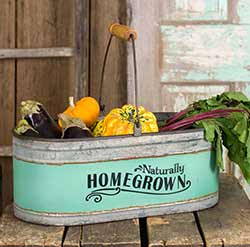 Teal Zinc Produce Bucket