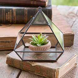 Geometric Glass Terrarium (Hangs or sits)