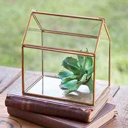 Small Glass House Terrarium