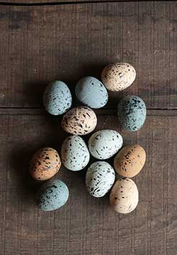 Speckled Spring Eggs (Set of 12)