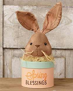 Spring Bunny Box