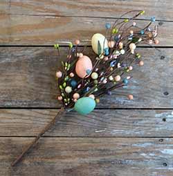 Spring Eggs Branch
