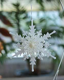 Snowflake with Flower Ornament