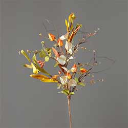 Fall Foliage Picks with Pods & Berries (Set of 2)