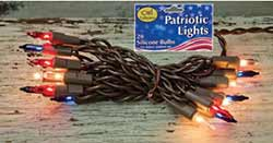 Patriotic String Lights - 20 count