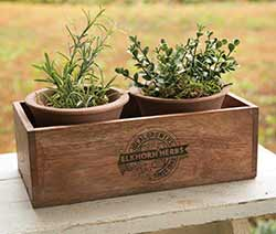 Rustic Herb Plants with Pots