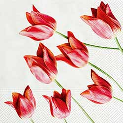Tulips Luncheon Paper Napkins