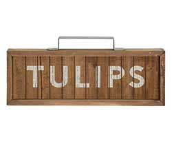 Tulips Framed Sign