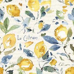 Le Citon Lemons Coaster
