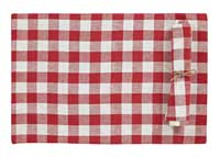 Buffalo Check Red Napkins (Set of 2)
