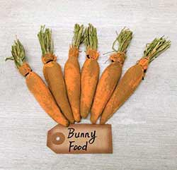 Grungy Fabric Carrots (Set of 6)