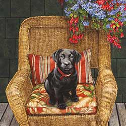 Very Good Puppy Coaster