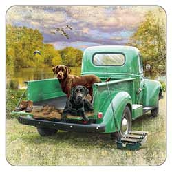 Pick up and Dogs Coaster